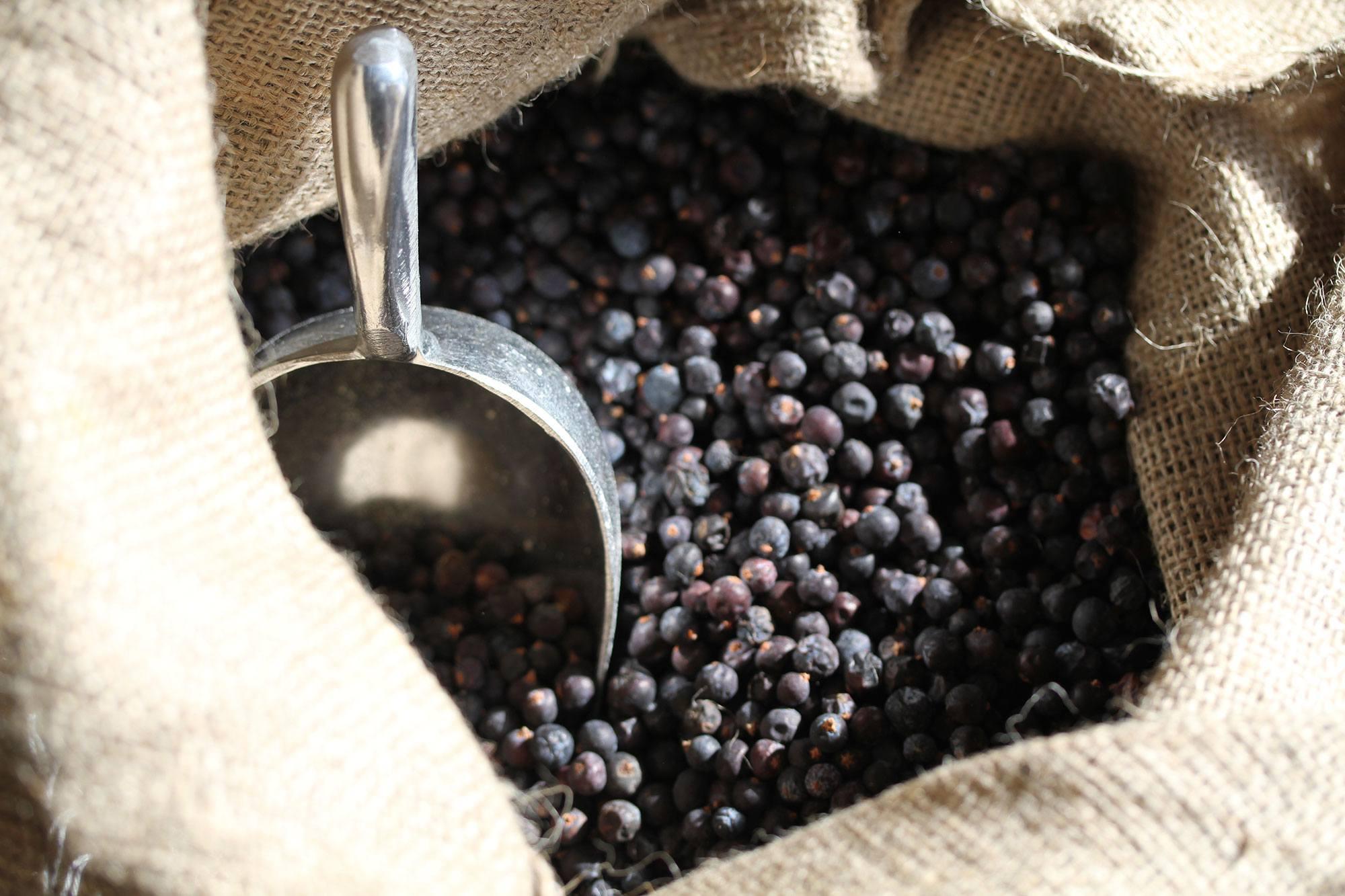 berries blackwater picture