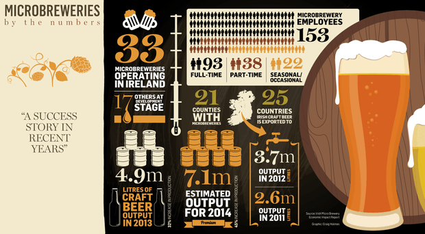 Craft Beer Ireland Statistics